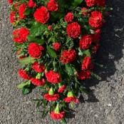 Red carnation casket